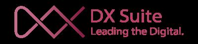 logo_dxsuite_02